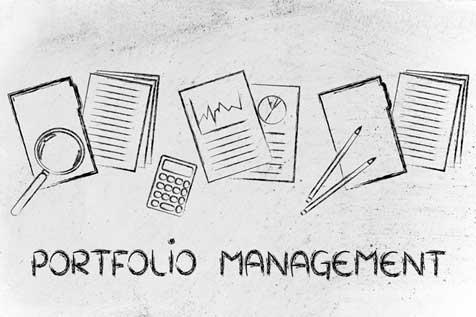 Possibilities of using Lean portfolio management